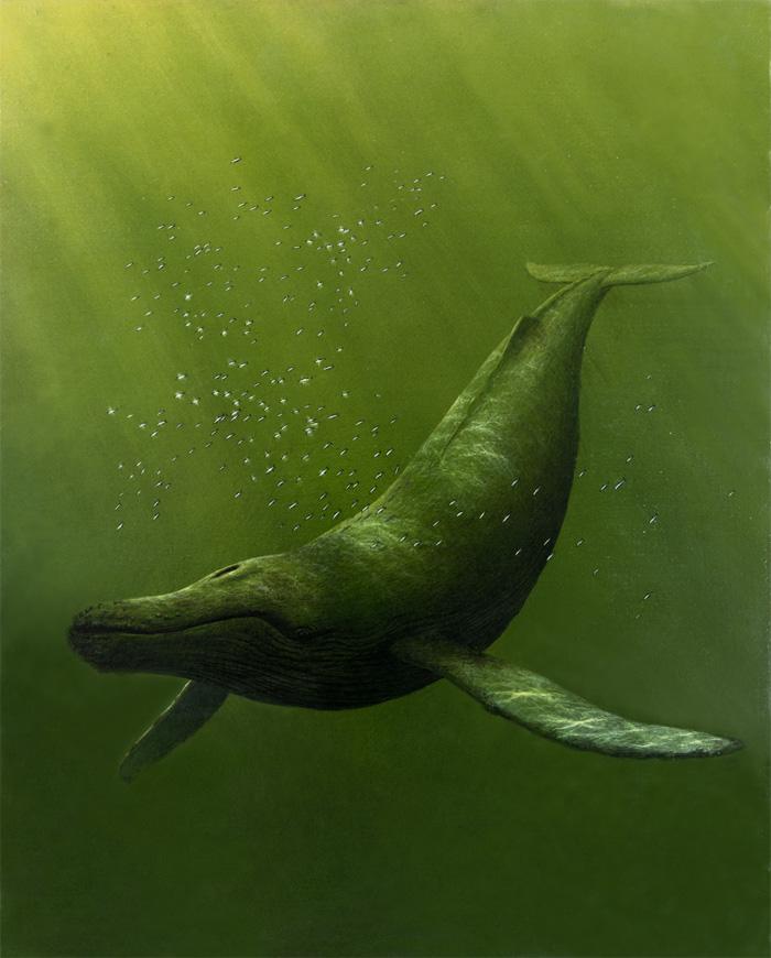 humpbackwhale copy